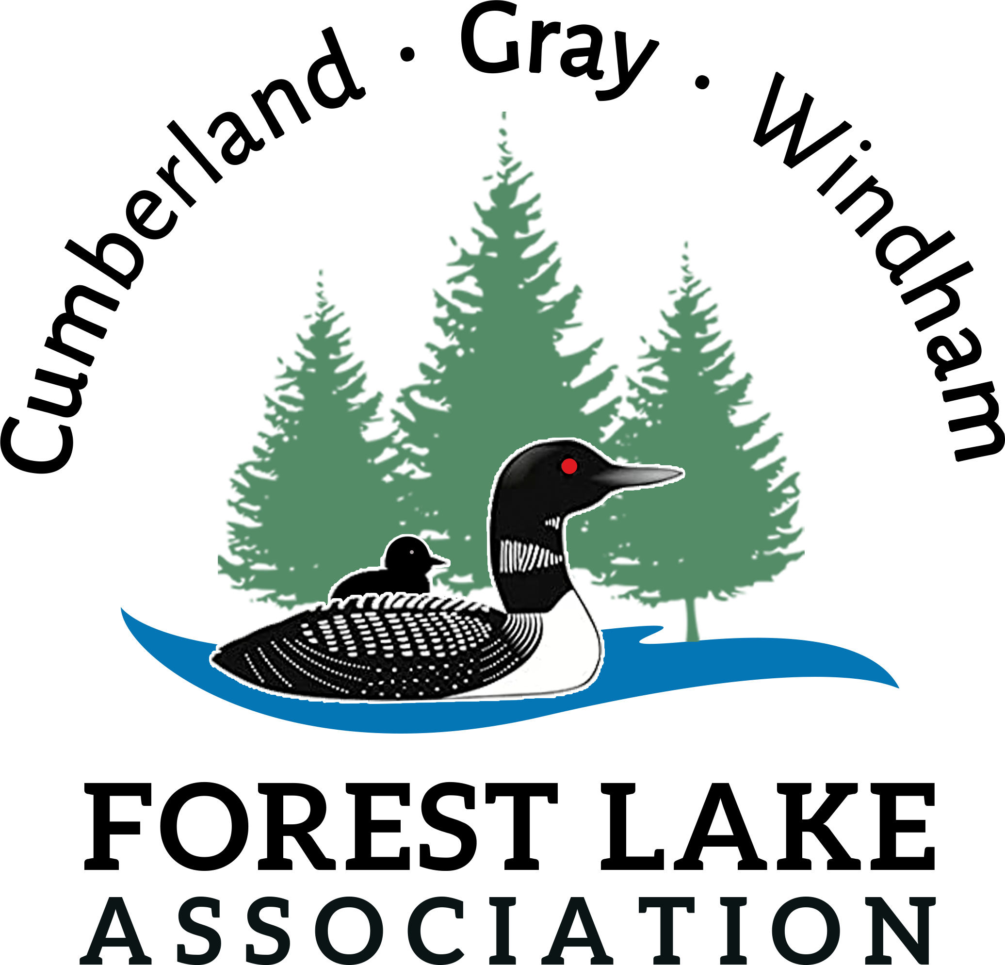 Forest Lake In Maine Logo