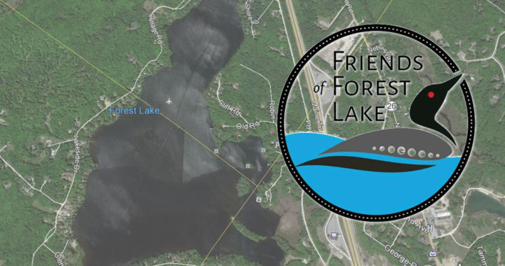 Friends of Forest Lake header image with logo